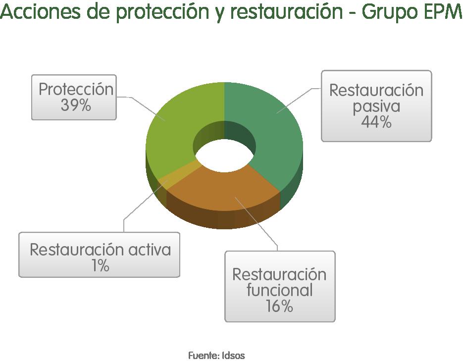 accionesdeprotecion